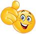 :thumbs-up: